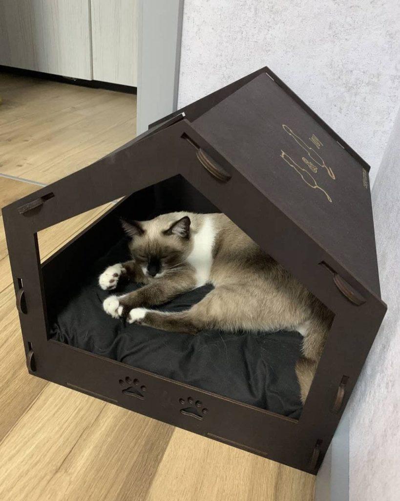 домик для кота кет джой